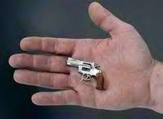 Smallgun